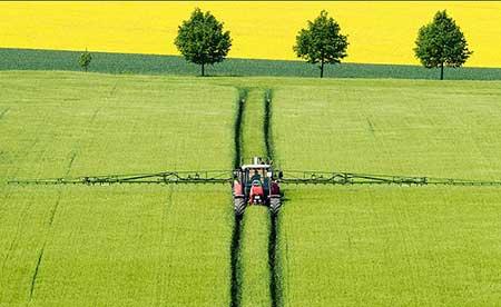عکسهای جالب,تصاویر دیدنی,مزرعه ای زیبا