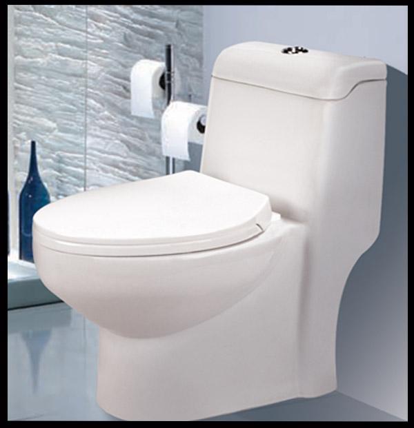 خانم ها از توالت ایرانی استفاده نکنند !!! - حفظ سلامت
