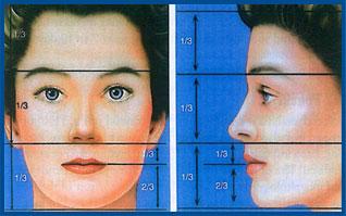 تناسب بینی با صورت