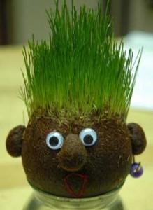 آموزش ساخت انواع سبزه ویژه عید نوروز 93